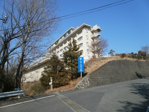 Jinmiyama_20110221_334