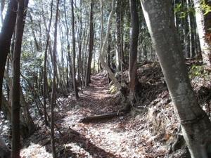 Azumayasan_20110302_039