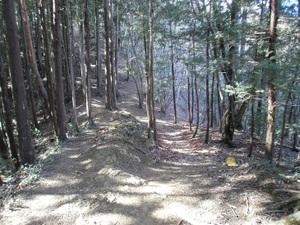 Azumayasan_20110302_049