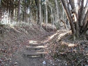Azumayasan_20110302_088