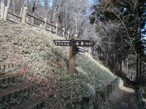 Azumayasan_20110302_104
