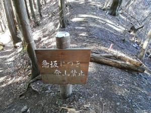 Azumayasan_20110302_133