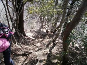 Azumayasan_20110302_192
