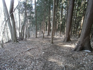 Azumayasan_20110302_204