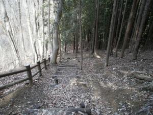 Azumayasan_20110302_216