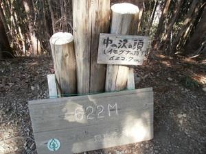 Izugatake_20110304_289