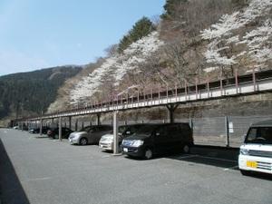 Okutama_mukashimichi_20110416_001