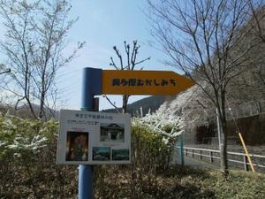 Okutama_mukashimichi_20110416_004