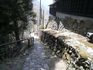 Okutama_mukashimichi_20110416_046