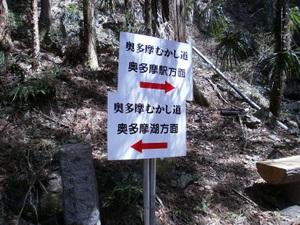 Okutama_mukashimichi_20110416_054