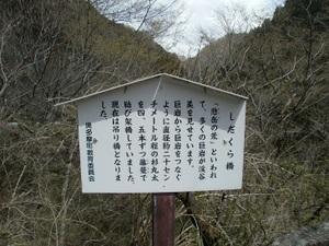 Okutama_mukashimichi_20110416_096