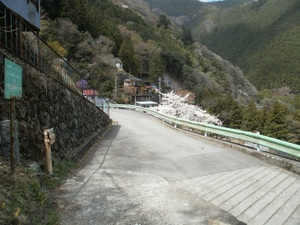Okutama_mukashimichi_20110416_135