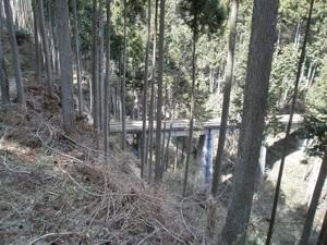 Okutama_mukashimichi_20110416_168