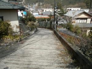 Okutama_mukashimichi_20110416_195