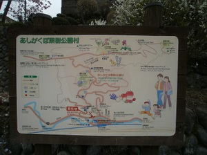Maruyama_20110418_008