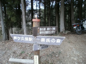 Maruyama_20110418_030_2