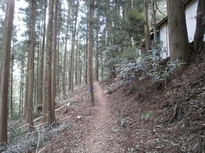 Maruyama_20110418_033