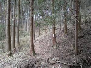 Maruyama_20110418_090