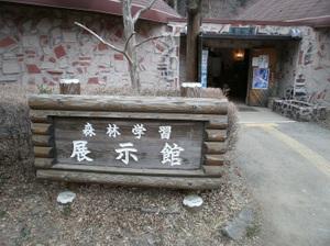 Maruyama_20110418_135