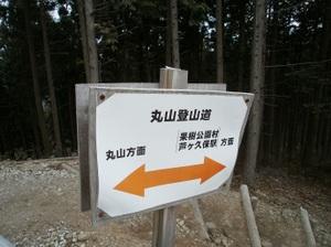 Maruyama_20110418_147