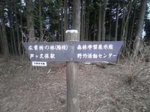Maruyama_20110418_186
