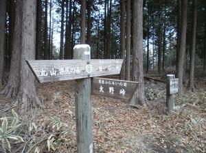 Maruyama_20110418_199