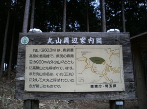 Maruyama_20110418_212