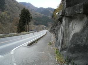 Maruyama_20110418_245
