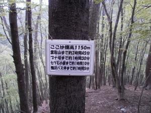 Kumotoriyama_20110510_048