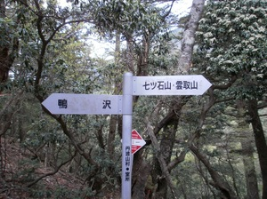 Kumotoriyama_20110510_054