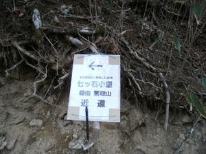 Kumotoriyama_20110510_074