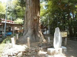 Izugatake_20110515_190