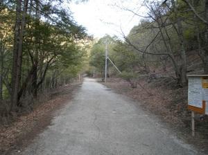 Kobushigatake_20110519_037
