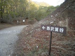 Kobushigatake_20110519_042
