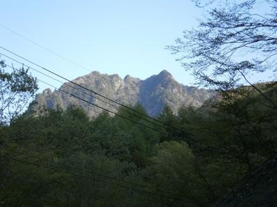 Kobushigatake_20110519_043