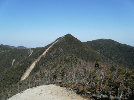 Kobushigatake_20110519_226