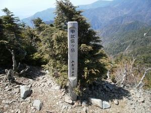 Kobushigatake_20110519_276