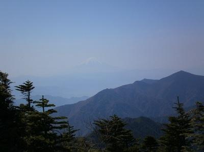 Kobushigatake_20110519_278