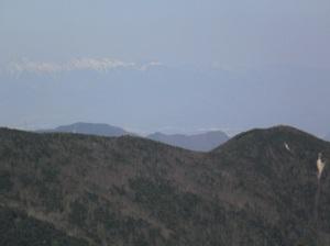 Kobushigatake_20110519_316_2