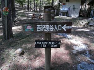 Kobushigatake_20110519_407_2