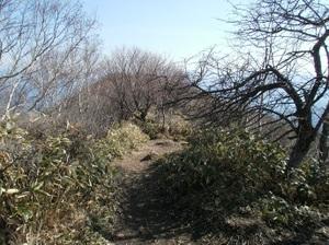 Akagisan_20110525_112