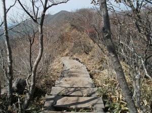 Akagisan_20110525_232