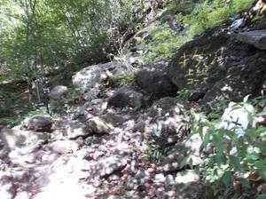 Myougisan_20110531_166