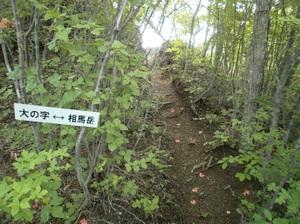 Myougisan_20110531_278
