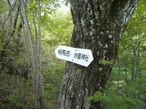 Myougisan_20110531_335