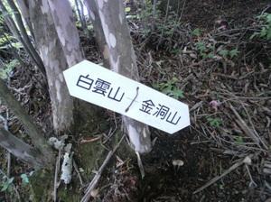 Myougisan_20110531_336