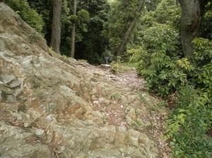 Ponponyama_ninomiyayama_20110615_29