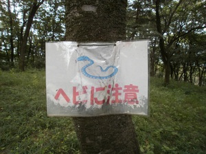 Ponponyama_ninomiyayama_20110615_53