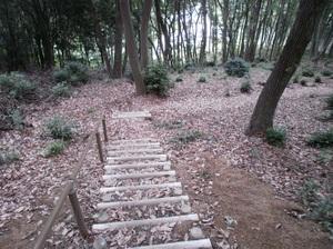 Ponponyama_ninomiyayama_20110615_81