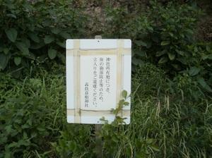 Ponponyama_ninomiyayama_20110615__3